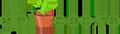 Ghivece Logo